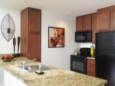 Brand New Luxury Apartment for 55+! Watertown MA