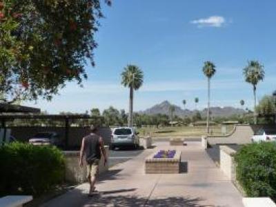 Olive Grove Village Condo Community Phoenix AZ